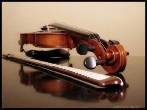 "Foto: Barbara Witecka, ""Violin"""